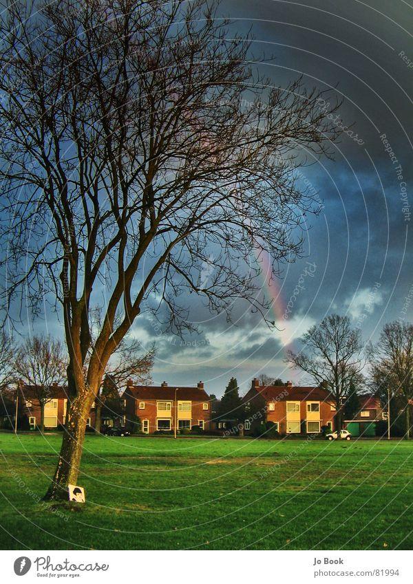 Rainbow Enschede Baum Unwetter Regenbogen rot grün gelb Wiese schön Naturphänomene Haus Park Stimmung dunkel Wolken RGB amelie Farbe Himmel blau Wetter
