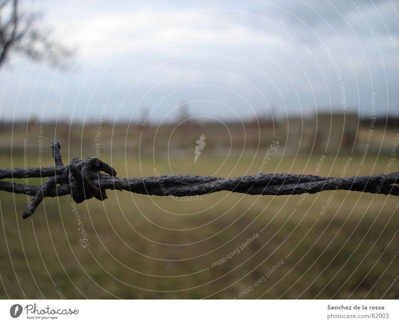 Auschwitz/Birkenau II verfallen Denkmal Rost Wahrzeichen Gitter Polen Stacheldraht Faschist Konzentrationslager Auschwitz-Birkenau Nationalsozialist