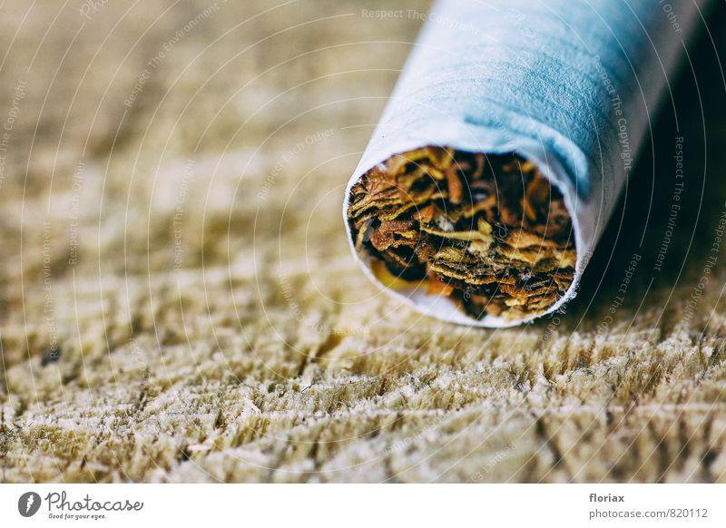 verführung. Erholung Holz Gesundheit braun liegen wild Papier Rauchen Krankheit drehen Rauschmittel Zigarette Sucht Willensstärke Verbote