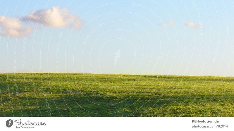 Himmel auf Erden Wolken grün Gras Wiese Sommer Sehnsucht Horizont Sonntag Abend Ferien & Urlaub & Reisen Schatten Sonnenuntergang Freizeit & Hobby verdunkeln