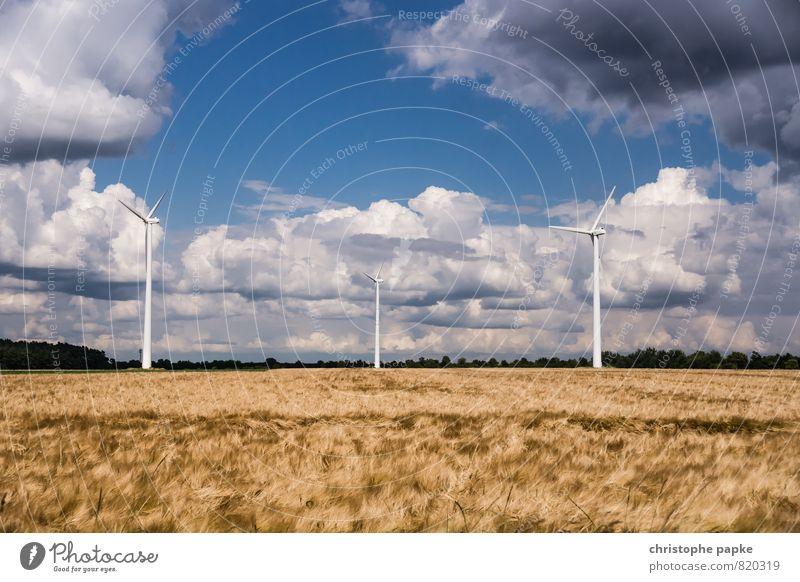 Die Ruhe vor dem Sturm Natur Sommer Landschaft Wolken Ferne Umwelt Herbst Energiewirtschaft Feld Wind groß Klima hoch Schönes Wetter Unendlichkeit