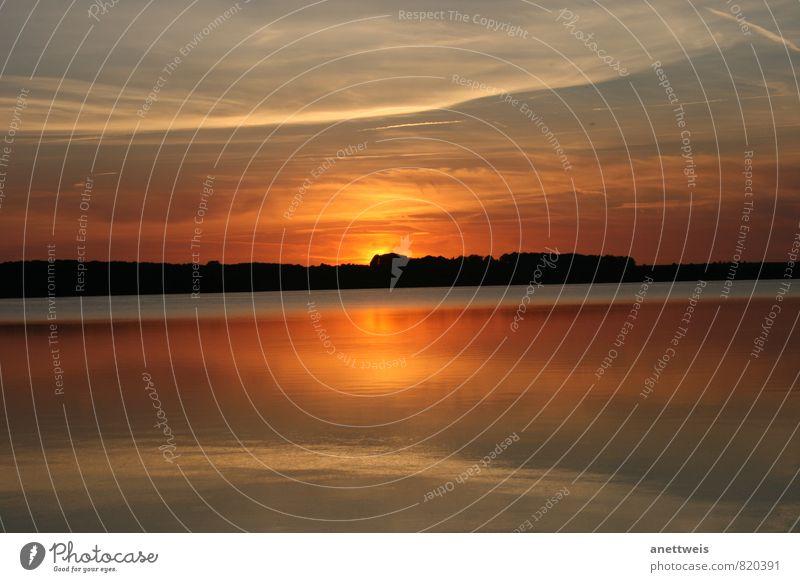 Sonnenuntergang auf dem See Natur Landschaft Wasser Himmel Wolken Sonnenaufgang Sommer Schönes Wetter Seeufer Strand leuchten träumen fantastisch Stimmung