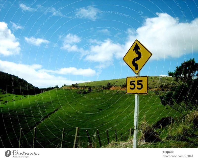 roadtrip Kurve grün Geschwindigkeit Wolken Gras Hügel gelb Zaun Schaf Neuseeland Wiese Geschwindigkeitsbegrenzung Landstraße Straße Landschaft Himmel blau Sonne