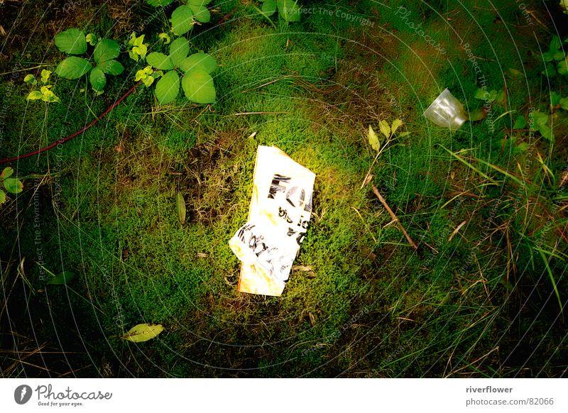 Stadtnatur Natur grün Farbe Wiese Umwelt Park Papier Mitte Müll Statue Altstadt