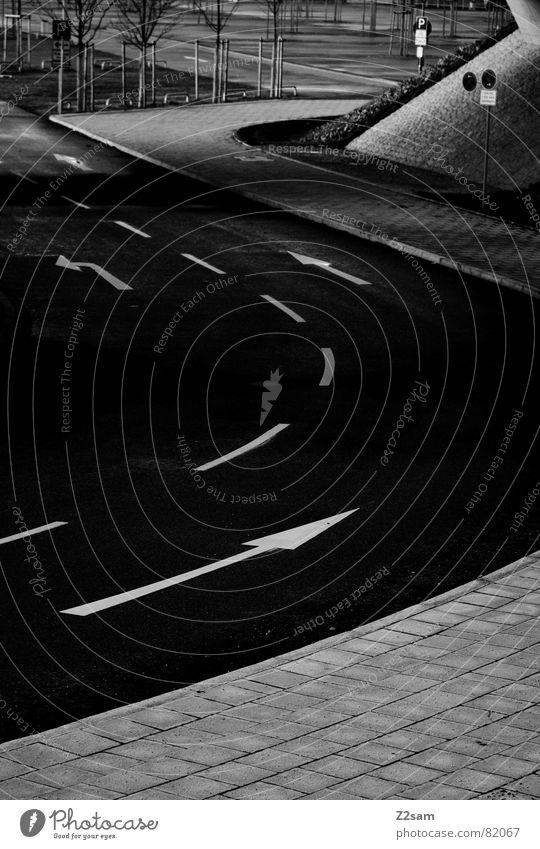 pfeilochismus II Baum schwarz dunkel Linie Straßenverkehr Schilder & Markierungen Verkehr Asphalt Spuren Pfeil Bürgersteig Verkehrswege Teer Fahrbahn Regel rau