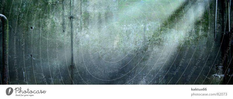 dam break alt Pflanze Wald Wand Mauer Stein dreckig leer Technik & Technologie Vergänglichkeit Fluss verfaulen stoppen Spuren verfallen Rost