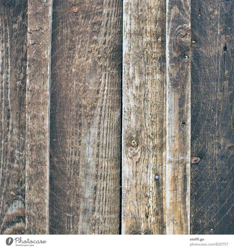 Brett vorm Kopp Garten Hausbau Renovieren Dachboden alt dunkel natürlich Holzbrett Holzwand Autotür Wand Holzhütte Hütte Maserung Muster trist Dielenboden Flur