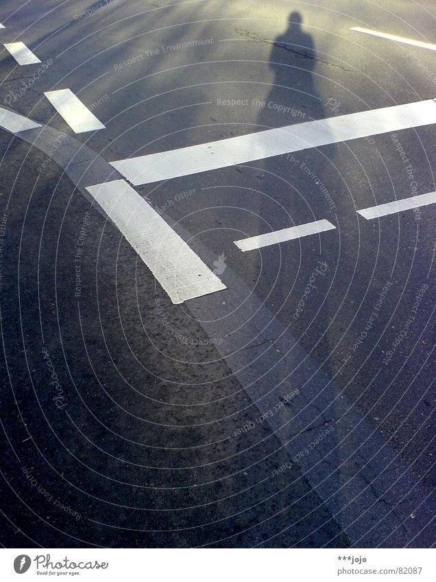 pedestrian crossing gehen Fußgänger Asphalt schwarz Koloss groß Selbstportrait Schatten verdunkeln Verkehrswege Fahrbahn Spaziergang Wachstum
