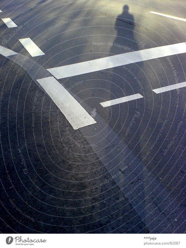 pedestrian crossing Sonne schwarz Wege & Pfade Linie Beleuchtung gehen laufen groß Verkehr Wachstum Spaziergang Asphalt Verkehrswege Straßenbelag Selbstportrait