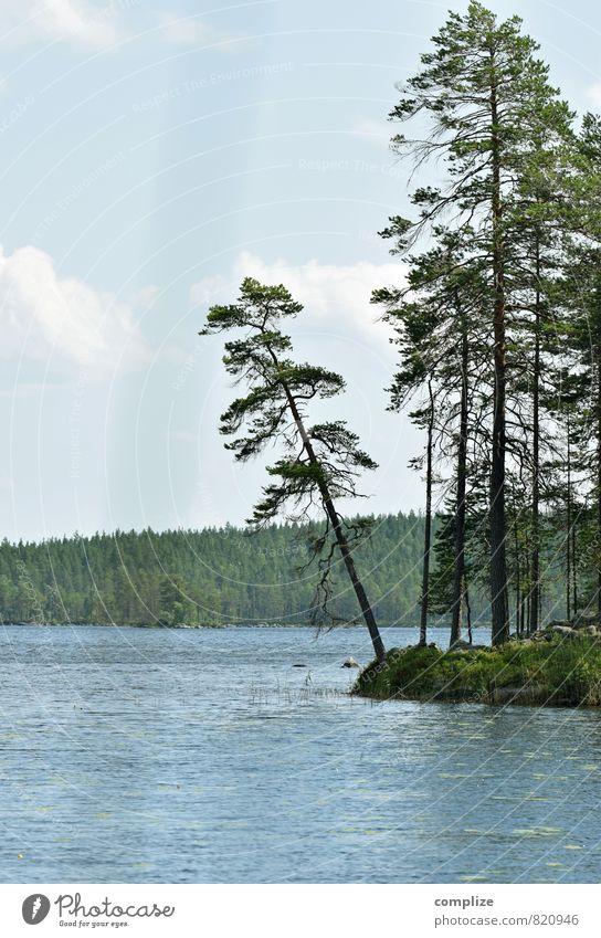 \ Himmel Natur Ferien & Urlaub & Reisen grün Wasser Sommer Sonne Baum Wolken Strand Ferne Umwelt lustig See Wellen wandern
