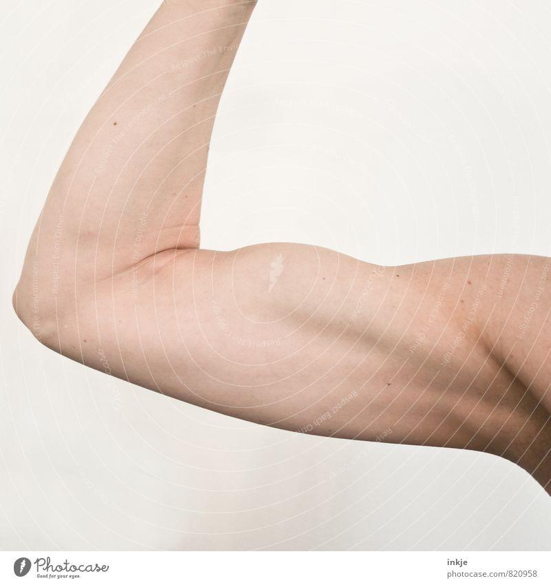 starkes stück Mensch Frau Erwachsene Leben Gefühle Sport Kraft Arme Erfolg Fitness machen Sport-Training Muskulatur Sportler
