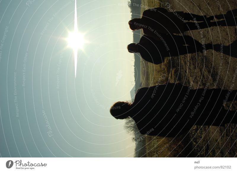 Scherenschnitt kalt Feld Fußweg 3 Baum Winter unterwegs Eis frisch verdunkeln Horizont Schatten Klarer Himmel Schlagschatten Sonne Spaziergang Wege & Pfade