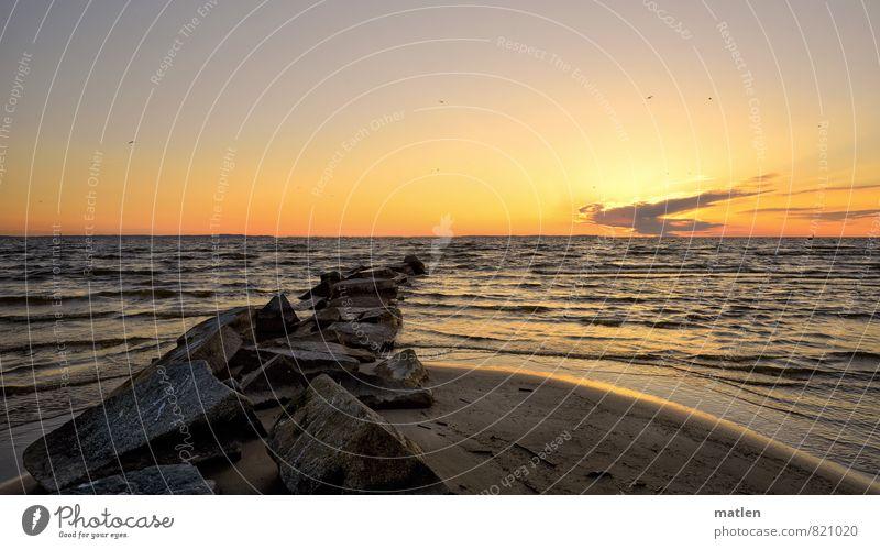 am Haff Natur Landschaft Himmel Wolken Horizont Sonnenaufgang Sonnenuntergang Frühling Wetter Schönes Wetter Wind Wellen Küste Strand Bucht Ostsee blau braun