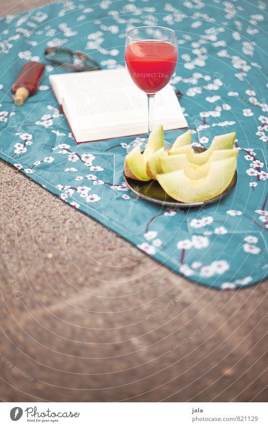 genuss Erholung ruhig Gesunde Ernährung Lebensmittel Frucht Zufriedenheit Glas ästhetisch Ernährung Buch Getränk Freundlichkeit Sonnenbad lecker Wohlgefühl harmonisch