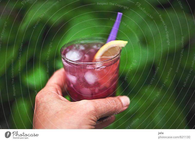 cocktail Pflanze Sommer Hand feminin Party Lifestyle Glas frisch ästhetisch Getränk trinken lecker Flüssigkeit Bar Alkohol Cocktail