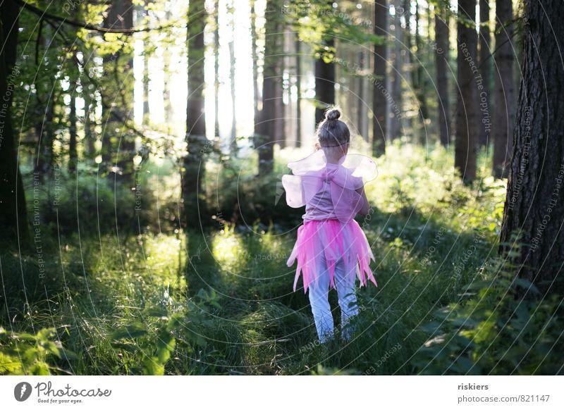 frühlingsfee Mensch feminin Kind Mädchen Kindheit 1 3-8 Jahre Umwelt Natur Sonnenlicht Frühling Sommer Schönes Wetter Wald entdecken leuchten Spielen wandern