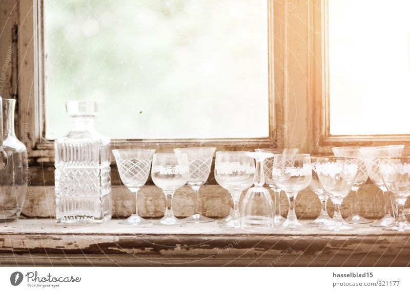 Prost Sommer Erholung ruhig Freude Lifestyle Glück Feste & Feiern Party Zufriedenheit Häusliches Leben Glas Geburtstag Getränk Hochzeit Wellness Veranstaltung