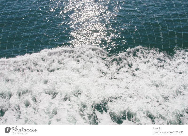 Gischt Sonne Sonnenlicht Wellen Nordsee Ostsee Meer Wasser Schwimmen & Baden Blick glänzend Unendlichkeit maritim nass blau weiß ruhig Fernweh Farbe Kraft