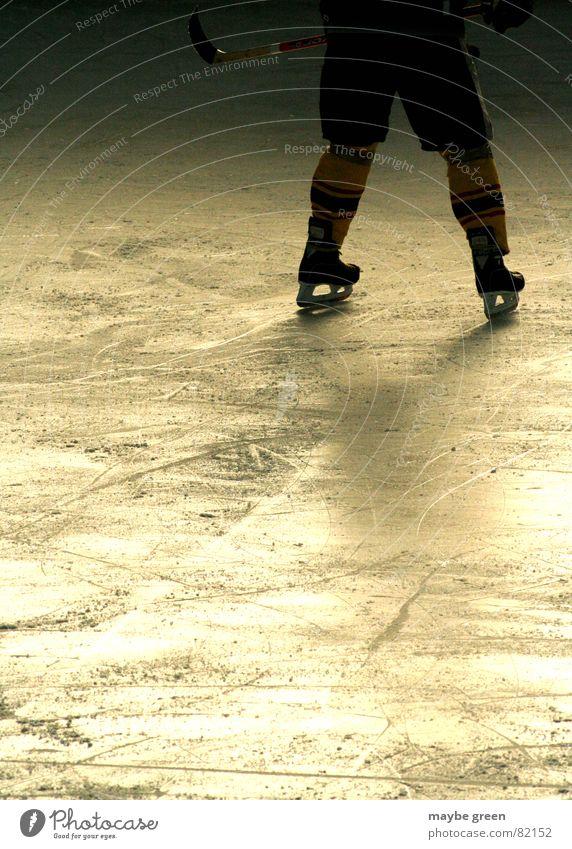 abwehrarbeit Feldhockey Schlittschuhe Eishockey stehen kalt Wintersport Freizeit & Hobby Mann Finale Spielen begegnen Lichteinfall Eisstadion