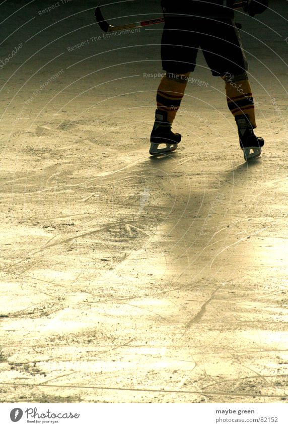 abwehrarbeit Mann Winter Sport kalt Schnee Spielen Eis Beine Stimmung gold stehen Freizeit & Hobby Entf Glätte Wintersport begegnen