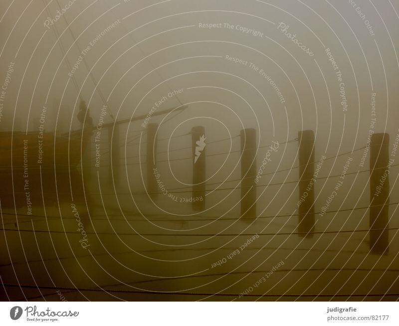 Boot im Nebel See Zingst Morgen Wasserfahrzeug Steg ruhig Einsamkeit Stimmung maritim Vorpommersche Boddenlandschaft Anlegestelle Umwelt Seil Liegeplatz
