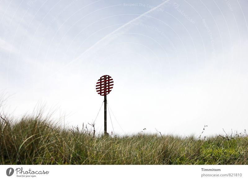 Happy Birthday Sternmarie! Ferien & Urlaub & Reisen Umwelt Natur Pflanze Himmel Sommer Schönes Wetter Gras Dänemark Schilder & Markierungen Seezeichen