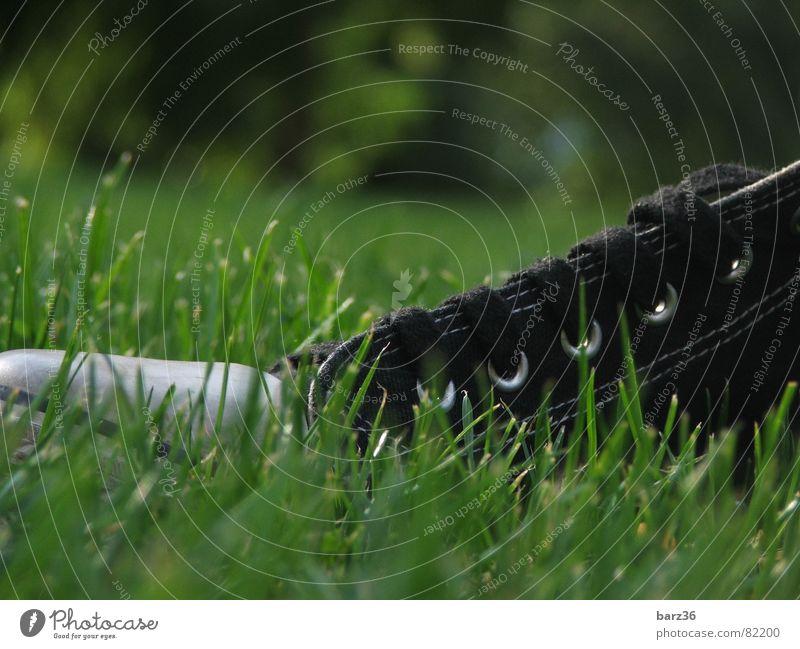 converse? Basketballschuh Chucks Schuhe Gras Sommer Herbst Schönes Wetter grün Physik Park Freizeit & Hobby schwarzer schuh stoffschuh Rasen Wärme Turnschuh