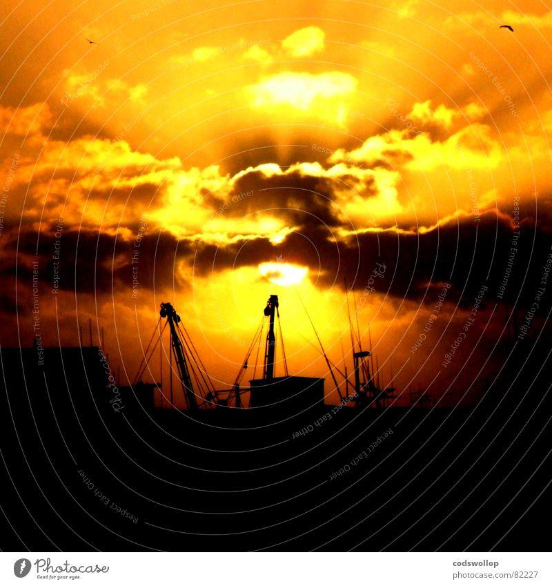 trawlers schön Strand schwarz gelb orange Küste Fisch Hafen Antenne Wasserfahrzeug Himmelskörper & Weltall Sonnenuntergang Radarstation Trawler