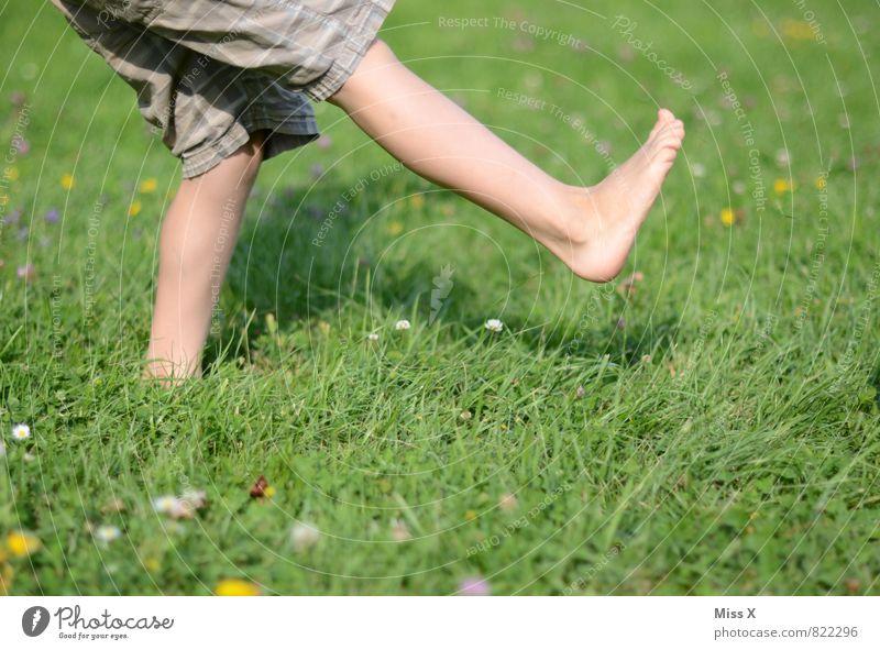 Kick Spielen Garten Sport Ballsport Mensch Kind Kleinkind Beine Fuß 1 1-3 Jahre 3-8 Jahre Kindheit Sommer Wiese laufen frisch Gesundheit Barfuß treten Farbfoto