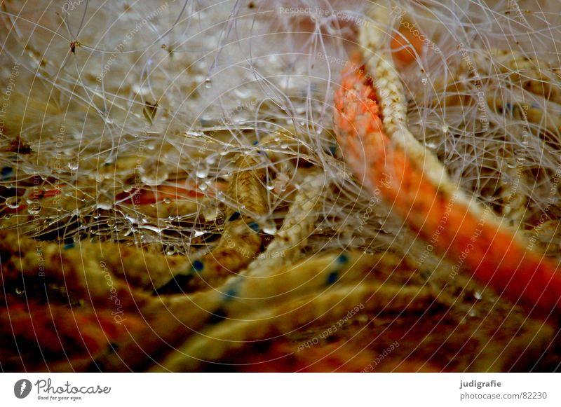 Fischers Geduldsspiel Meer Herbst nass Wassertropfen Seil Streifen Schnur Netz Hafen feucht chaotisch durcheinander Fischereiwirtschaft Nähgarn Schlaufe