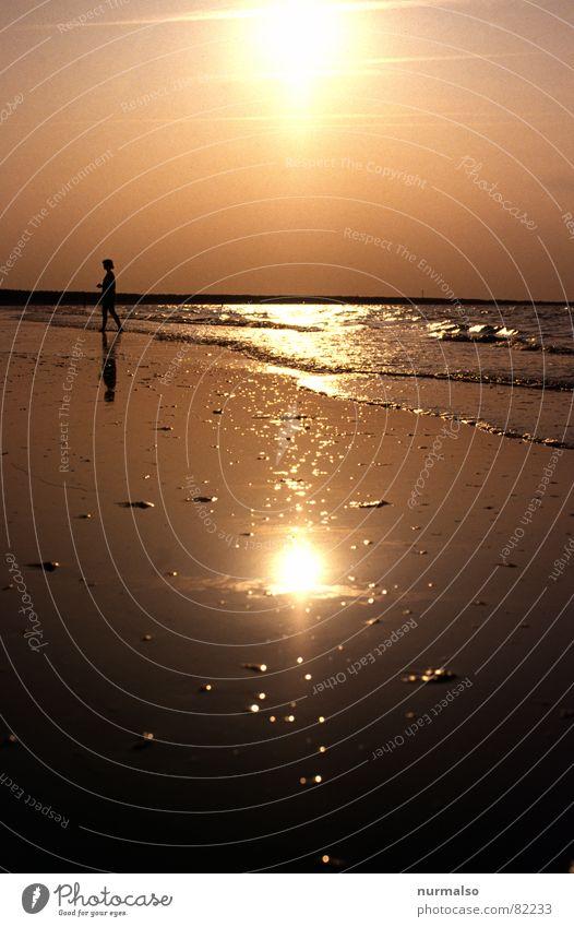 Goldene Ostsee Wasser Sommer Strand Insel Schwimmen & Baden Sonnenbad Schifffahrt Ostsee Abenddämmerung Zingst Prerow Badestelle Halbinsel Inselbewohner