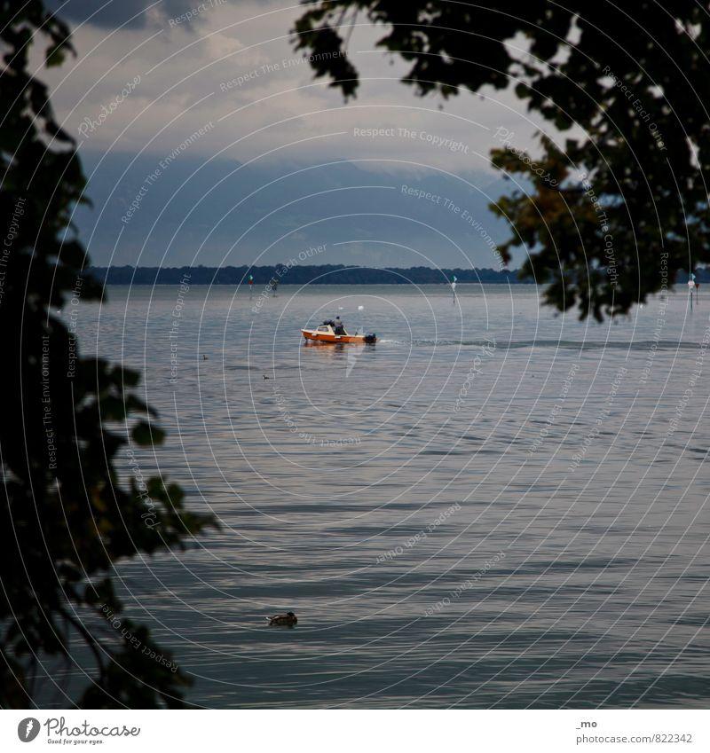 am Freitag gibt's fisch Angeln Fischer Landschaft Wasser Wolken Sommer Küste Seeufer Meer Fischerboot Sportboot Motorboot fahren frisch maritim natürlich blau