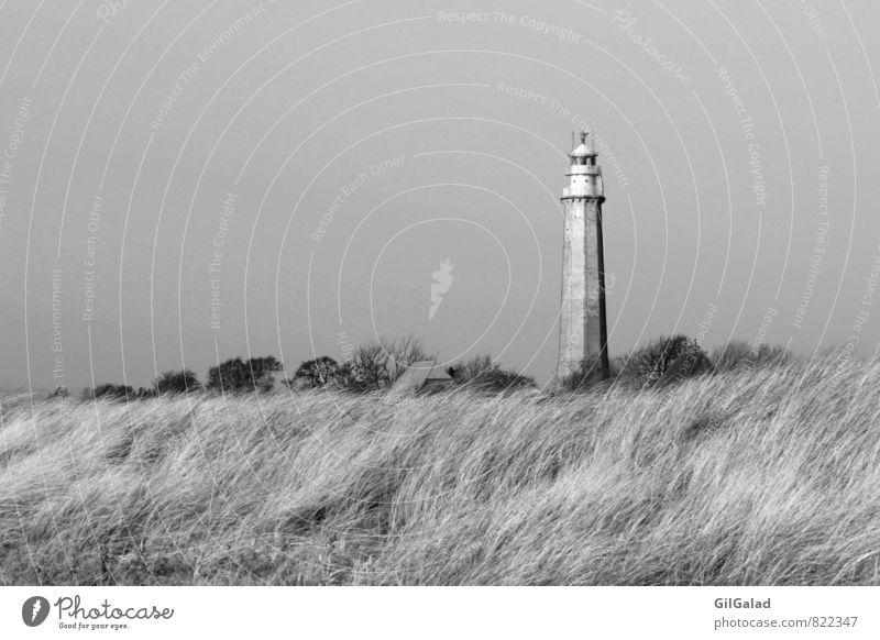 Leuchtturm im Nirgendwo Umwelt Natur Landschaft Herbst Winter Sträucher Küste Strand Ostsee Insel Fehmarn Flügge Menschenleer Güterverkehr & Logistik