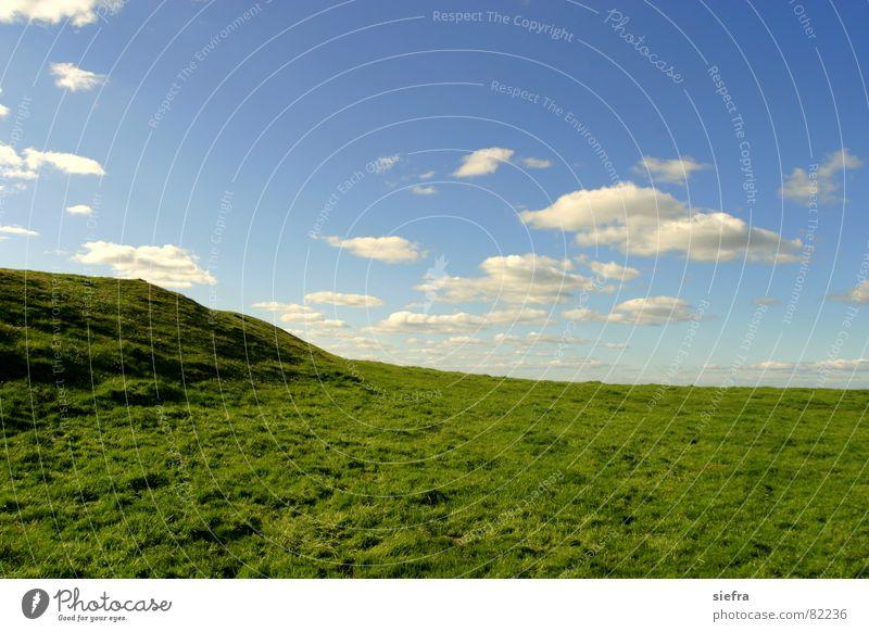 Bliss 2.0 Wolken Wiese Gras grün Außenaufnahme blau Himmel Glück Freiheit