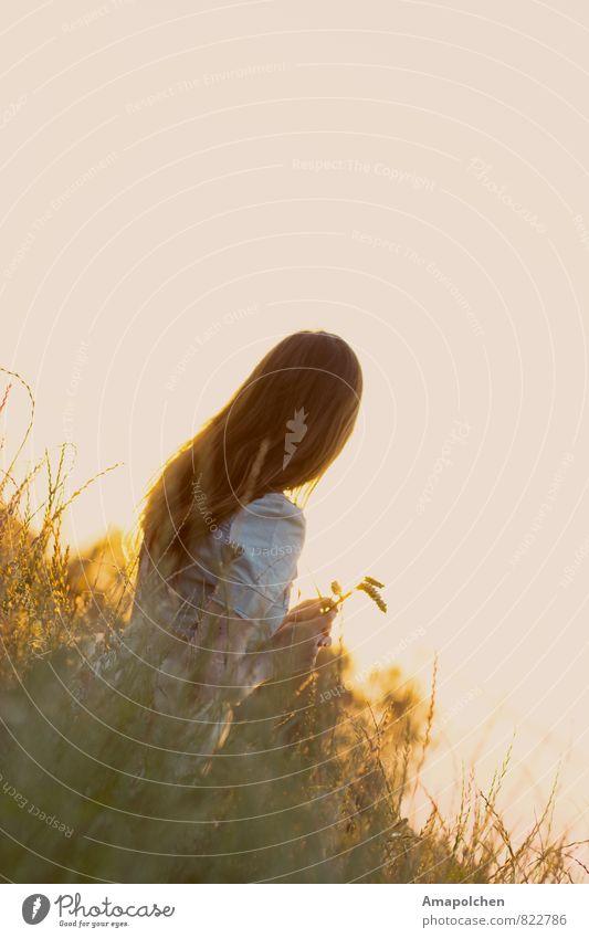 ::14-17:: Natur Ferien & Urlaub & Reisen Jugendliche Sommer Junge Frau Erholung ruhig Ferne Umwelt Leben Wiese feminin Glück Gesundheit Freiheit Gesundheitswesen