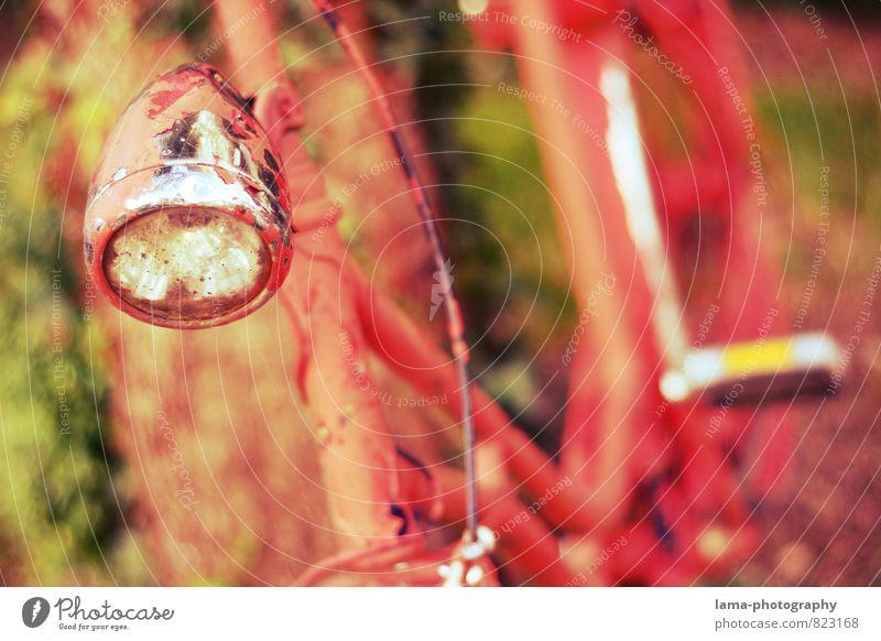 altgedient Freizeit & Hobby Fahrradtour Fahrradlicht Pedal retro rot Rost Farbfoto Außenaufnahme Nahaufnahme Schwache Tiefenschärfe