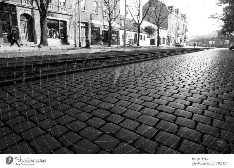 Katzenköpfe in Babelsberg Stadt Winter Straße Stein Gleise historisch Kopfsteinpflaster Stadtzentrum Straßenbelag Pflastersteine Kulisse Fahrbahn Potsdam
