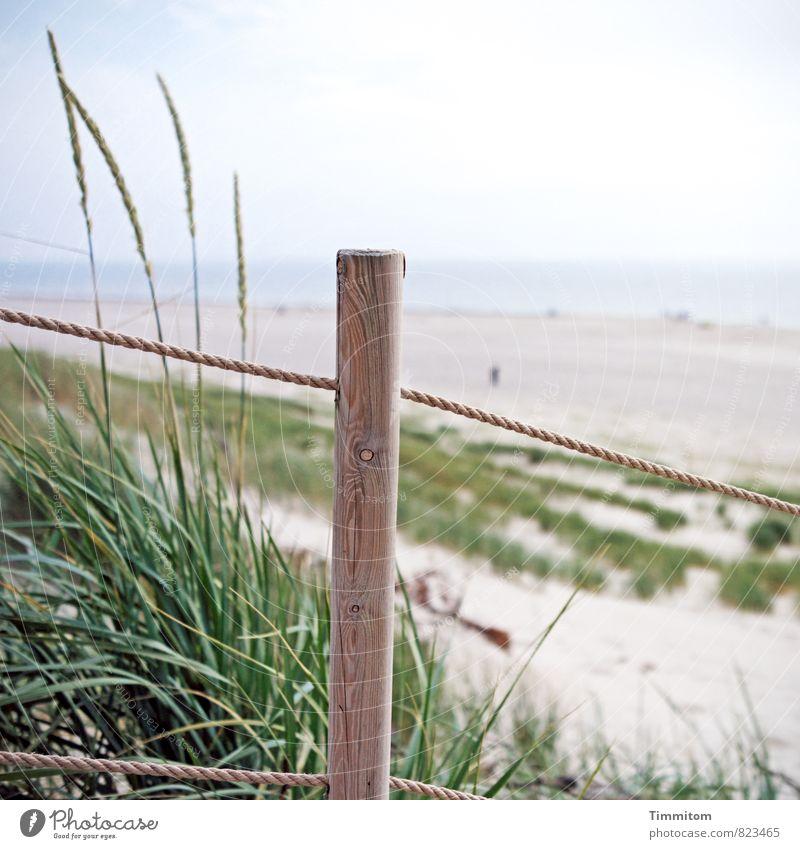 Wasserzeichen | Orientierungshilfe. Ferien & Urlaub & Reisen Umwelt Natur Landschaft Pflanze Urelemente Sand Himmel Schönes Wetter Strand Dänemark Pfosten Seil