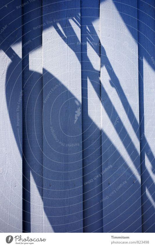Schattenmenge. blau Haus schwarz Wand Gefühle Mauer Holz Linie ästhetisch einfach Ferienhaus Dänemark