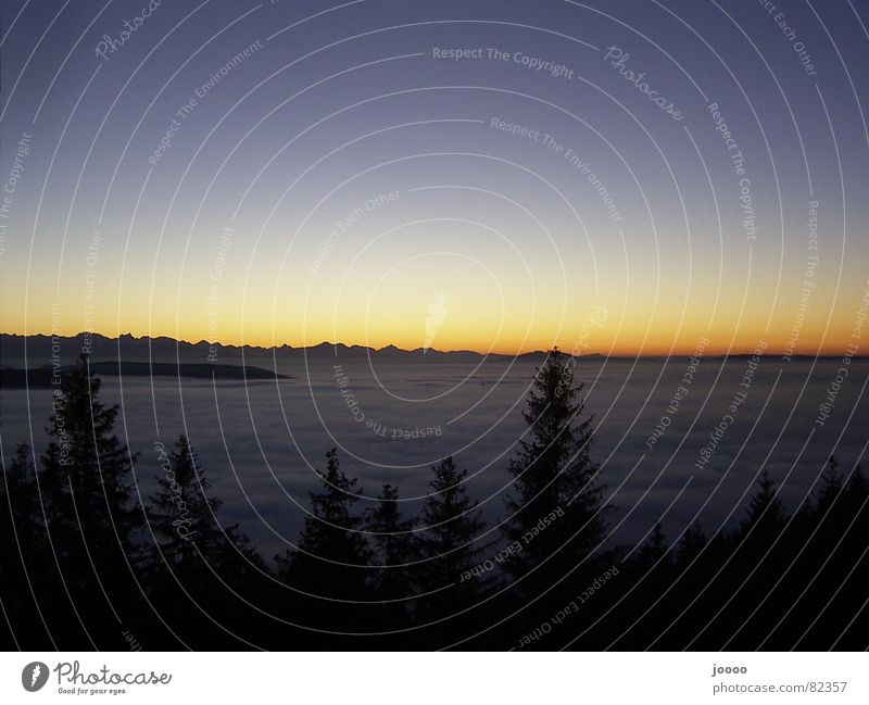 Sundown über Nebel im Tal Sonne Meer Berge u. Gebirge Nebel Alpen Decke Abenddämmerung Bergkette Himmelskörper & Weltall Schichtarbeit Nebelschleier