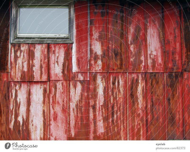 Love Shack (Folge 2: Einblick erschwert) rot Fenster Wand Mauer Wohnung Vergänglichkeit Landwirtschaft verfallen Hütte Verfall Rost Stahl Scheune Blech Insolvenz Stall