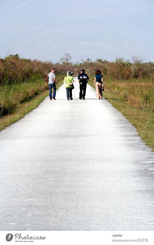 It's a long way to .... Krokodil Ausdauer unerschütterlich sprechen Mensch Freundschaft Familie & Verwandtschaft Spaziergang ruhig Einsamkeit Everglades NP heiß