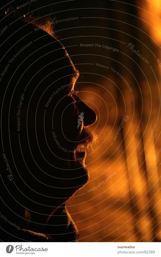 Die Wärme Mensch Mann rot ruhig Denken Kopf Stimmung maskulin beobachten Brand Verstand entdecken Abenddämmerung Flair gemütlich
