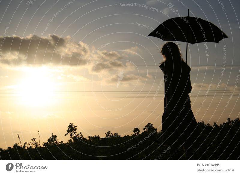 puesta de sol Regenschirm Sonnenuntergang Wolken Sonnenstrahlen Feld Wiese Herbst