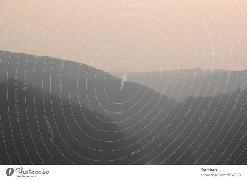 Im Frühtau zu Berge Himmel Natur Ferien & Urlaub & Reisen Einsamkeit Landschaft Ferne Wald Berge u. Gebirge Traurigkeit Freiheit Stimmung Deutschland Nebel