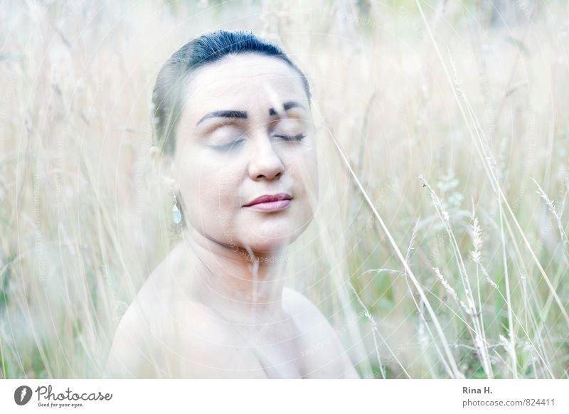 Madame R. Frau Erwachsene 30-45 Jahre Natur Landschaft Pflanze Sommer Schönes Wetter Gras Wiese Ohrringe Haare & Frisuren sitzen träumen hell schön feminin