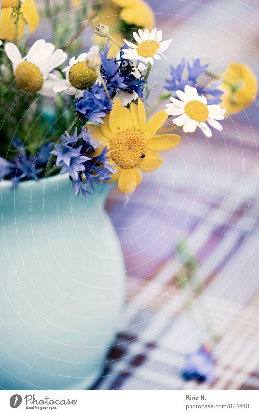 WiesenBlümchen II blau Sommer Blume gelb Blühend kariert Tischwäsche Vase Kornblume Kamille
