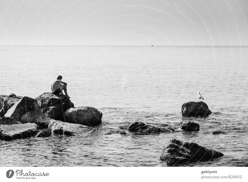 Männer die auf Möwen starren Ferien & Urlaub & Reisen Mann Sommer Sonne Erholung Meer Landschaft ruhig Strand Ferne Küste Schwimmen & Baden Horizont träumen