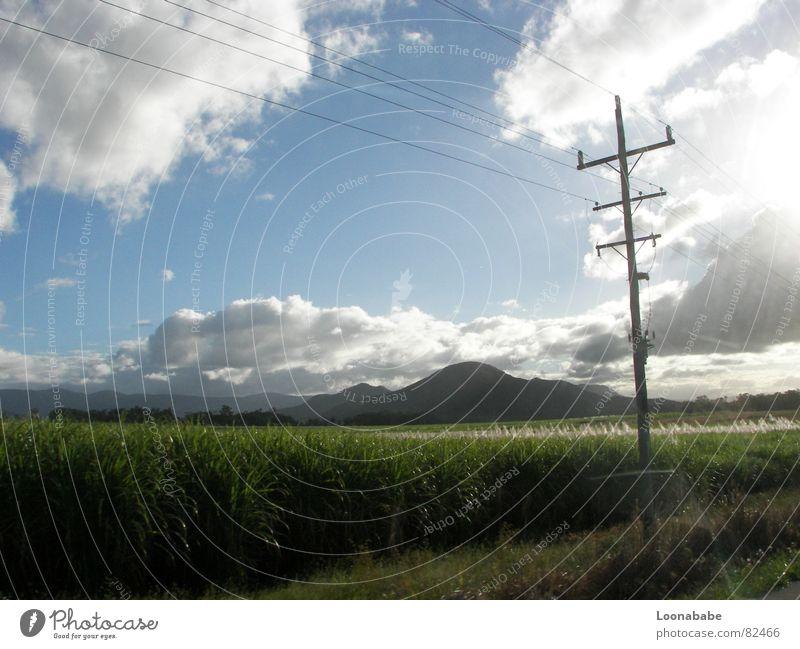 cane sugar Zuckerrohr Wolken Queensland Australien Elektrizität Licht Straße Landschaft roadtrip