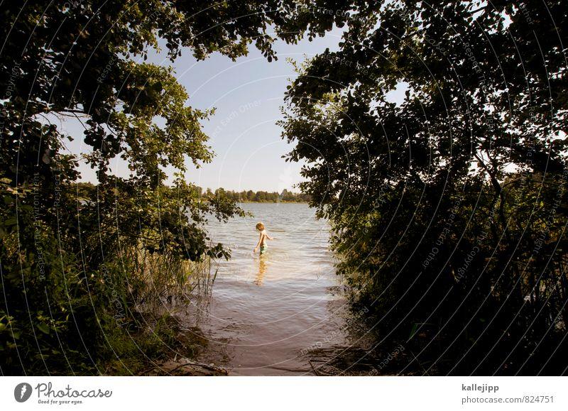 zum see Mensch Kind Natur Pflanze Wasser Sommer Baum Blatt Landschaft Tier Wald Umwelt Leben Junge Spielen Schwimmen & Baden